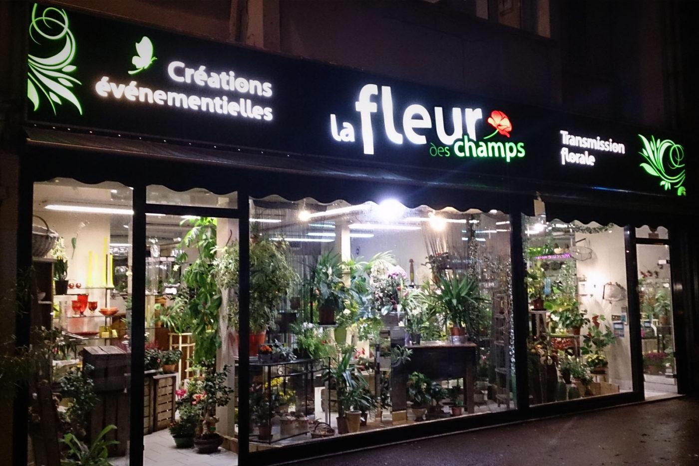 fleurdeschamps_enseigne-lumineuse-led-saintlo